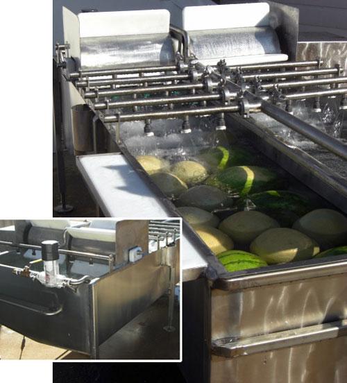 Jr Melon Washer Amp Fruit Washer